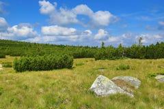Krkonosebergen, Tsjechische Republiek, Polen Stock Fotografie