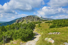 Krkonosebergen, Tsjechische Republiek, Polen Stock Foto's