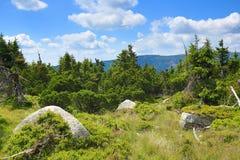 Krkonosebergen, Tsjechische Republiek, Polen Royalty-vrije Stock Fotografie