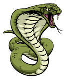 Królewiątko kobry wąż Zdjęcie Royalty Free