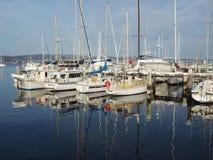 Królewski jachtu klub Tasmania Obraz Royalty Free