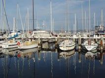 Królewski jachtu klub Tasmania Obraz Stock