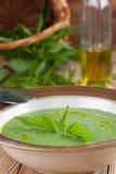 Kräm- soppa för nässla Royaltyfri Foto