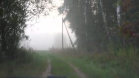 Körning av bilen till och med den lantliga vägen i tät dimma 4K stock video