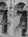Kroatien, Zadar, skönhet, historia, lyckligt, stenen och frigör royaltyfria bilder