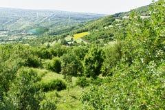 Kroatische Landschaft Stockfotografie