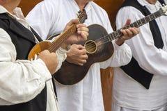 Kroatiska musiker Arkivbild
