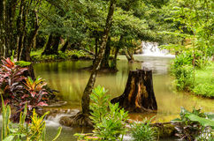 Kroeng Krawia waterfall Stock Images