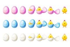 7 kroków animacj różni kolory łamający kurczaki w wektorze i jajko ilustracji