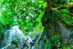 Krok I Dok vattenfall Arkivfoto