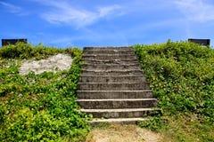 Krok na zieleni Zdjęcia Royalty Free