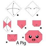 Krok po kroku instrukcje dlaczego robić origami świni Fotografia Royalty Free