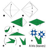 Krok po kroku instrukcje dlaczego robić origami A irysowi (liście) Fotografia Royalty Free