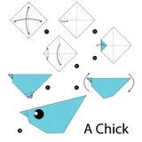 Krok po kroku instrukcje dlaczego robić origami kurczątka Fotografia Royalty Free
