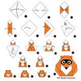 Krok po kroku instrukcje dlaczego robić origami Azjatyckiego szop pracz Zdjęcie Royalty Free