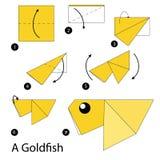 Krok po kroku instrukcje dlaczego robić origami Goldfish Obraz Royalty Free