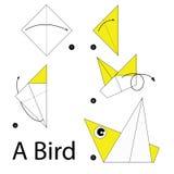 Krok po kroku instrukcje dlaczego robić origami ptaka Obrazy Stock