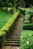 kroki Zdjęcie Royalty Free