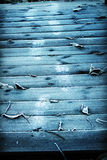Kroki na mrozu moscie Fotografia Stock