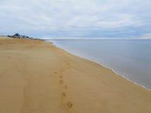 Kroki na piaskowatej plaży Śliwkowa wyspa, Massachusetts obraz stock