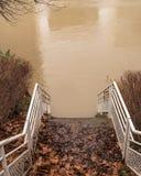 Kroki - puszek w brown wodę rzeczną fotografia royalty free