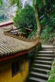 Kroki starzejącymi się Chińskimi budynkami na odrewniałym zboczu góry Zdjęcia Stock