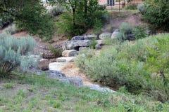 Kroki up od rzeki Obrazy Stock