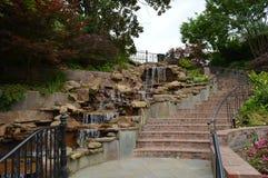 Kroki w ogródzie Zdjęcie Stock