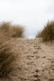 Kroki w piasku między piaskowatymi traw diunami Obrazy Stock