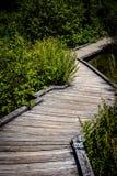Krokig strandpromenad Royaltyfri Fotografi