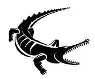 Krokodil als mascotte Stock Afbeeldingen
