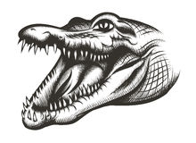 Krokodil hoofdzwarte Stock Afbeelding