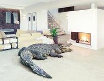 Krokodil i den lyxiga inre Arkivbilder