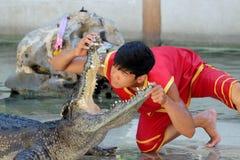 Krokodil-Show am Samutprakarn-Krokodil-Bauernhof und am Zoo, Thailand Stockfotos
