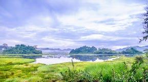 Krokodil sjö i Cat Tien National Park i Vietnam royaltyfri fotografi