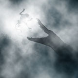 Krokodil som anfaller apan Royaltyfri Bild