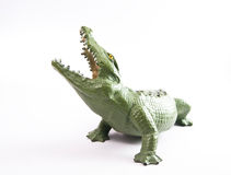 Krokodilkrokodil Lizenzfreie Stockfotografie