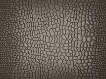 Krokodille huid: nuttig als textuur of achtergrond Royalty-vrije Stock Afbeeldingen