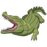 Krokodillebeeldverhaal Royalty-vrije Stock Fotografie