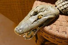 Krokodillehoofd Stock Foto's