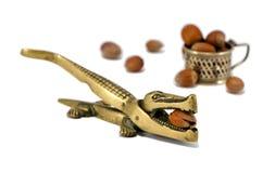 Krokodilmutterensprung-Hilfsmittel Cobnut getrennt auf Weiß Stockbilder