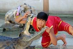 Krokodilshow am Samutprakarn-Krokodil-Bauernhof und dem Zoo Stockbilder