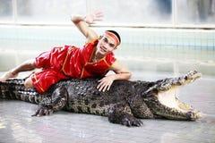 krokodilshow thailand Royaltyfri Foto
