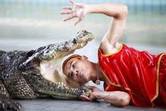 krokodilshow thailand Arkivfoto
