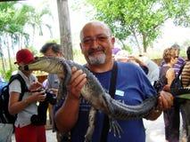 Krokodiltourist Stockfotos