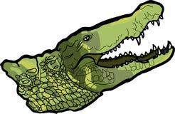 krokodyl ilustracji
