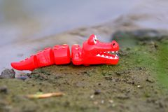 Krokodyl lala z rzeki strony tłem obraz stock