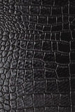 krokodyl skóra Zdjęcia Royalty Free