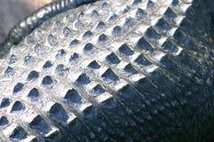 Krokodyl skóry zakończenie up obraz stock