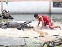 Krokodyla przedstawienie przy krokodyla gospodarstwem rolnym Obrazy Stock